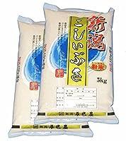 【精米】新潟県産(新潟辰巳屋産地直送米) 白米 こしいぶき10kg(5kg×2袋)