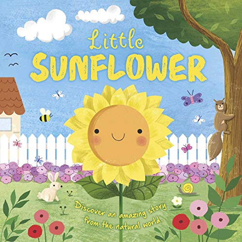 Nature Stories: Little Sunflower: Padded Board Book