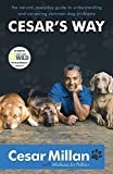 Cesar's Way - The Natural, Everyday Guide to Understanding and Correcting Common Dog Problems by Cesar Millan(2008-02-07) - Hodder Paperbacks - 07/02/2008