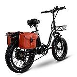 Bicicleta Plegable Y20 Ebike de 20 Pulgadas, Bicicletas Electricas Mejorada con Batería Tesla 24AH 48V, Bicicleta Montaña Adulto con 750W, Bicicleta Electrica Montaña