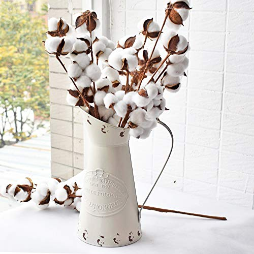 HyFanStr Rustikaler Krug aus Metall, dekorative Blumenvase, rustikale Kanne cremefarben