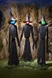 The Lakeside Collection Light-Up Witches Halloween Yard Decorations with LED Lights - Set of 3