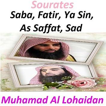 Sourates Saba, Fatir, Ya Sin, As Saffat, Sad (Quran - Coran - Islam)
