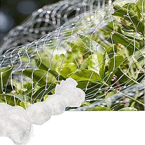 Red de Malla para Antipájaros para Protección de Jardín, Malla Antipájaros para Estanque, Huerto, Verduras (Mesh : 2.5cm, Size : 7m x 7m)