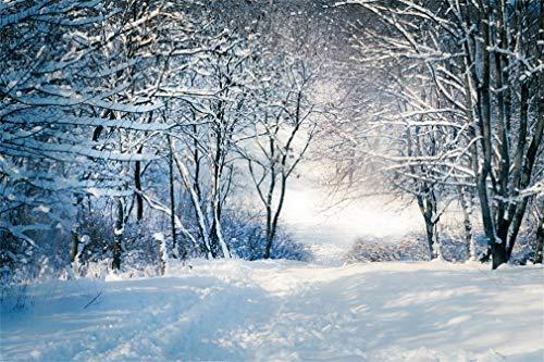 YongFoto 3x2m Vinilo Fondos Fotograficos Paisaje de Invierno Árboles congelados Navidad Fondos...