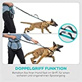 Freihand Hundeleine Doppelleine TaoTronics zum Hunde Joggen, Spazieren, Wandern Radfahren – Hände Frei Trainings-Gürtel mit doppeltem Gummiseil und Haltegriff für alle größe und kleine Hunde - 2
