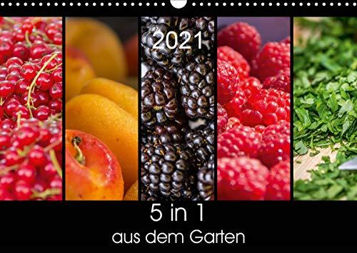5 in 1 - aus dem Garten (Wandkalender 2021 DIN A3 quer)