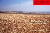 CRP SPAIN El Viento que Recorre España ( スペインを巡る風 ) 1993-2006 chap.2