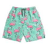 INGEAR Little Boys Quick Dry Beach Board Shorts Swim Trunk...