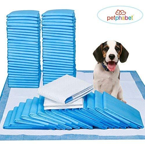 petphabet Ultra saugfähige Welpenunterlagen Puppy Pads Trainingsunterlagen Toilettenmatte Hygieneunterlagen für Welpen Absorbieren 2X viel 84 Stück 58x61 cm