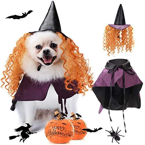 Legendog disfraz de Halloween para perro, disfraz de Halloween...