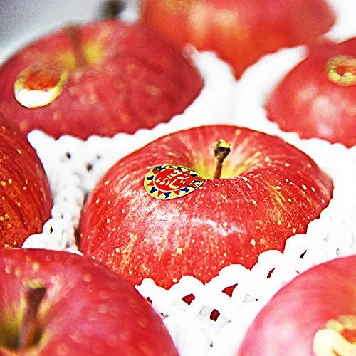 山形県産 完熟 サンふじりんご 3kg 約10玉前後
