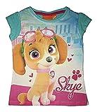 Nickelodeon Paw Patrol Skye Top Pup Camiseta, Turquesa (Turquesa), 4 Aos para Nias