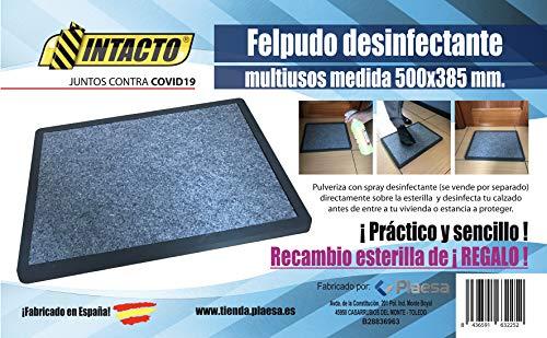 Felpudo DESINFECTANTE doméstico 500x385 mm.