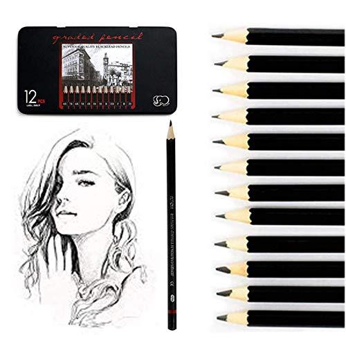 Bleistift Set, Surcotto 12 Stück Zeichenstifte Skizzierstifte Set 8B 7B 6B 5B 4B 3B 2B B HB F H 2H Künstlerstift für Kinder und Erwachsene