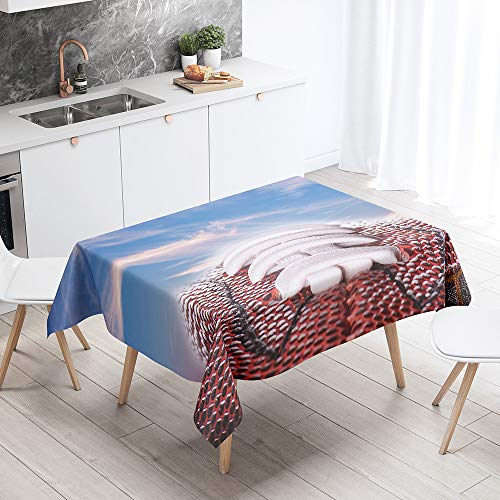 Fansu Rectangular Polyester Waterproof Tablecloth, 3D football pattern Creative Table Cover,Multi-purpose Decorative for Party Banquet Garden Outdoor or Indoor (sky,140x140cm)