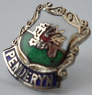 1000 Flags Penderyn Walia przypinka odznaka walijski z zapięciem motylkowym (w0192)