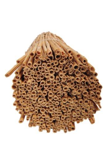 HR Reet für Insektenhotelbau