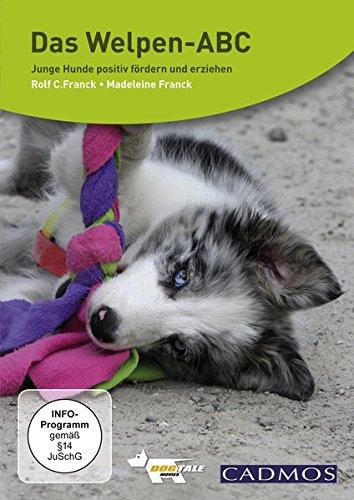 Das Welpen ABC-junge Hunde positiv fördern und erziehen