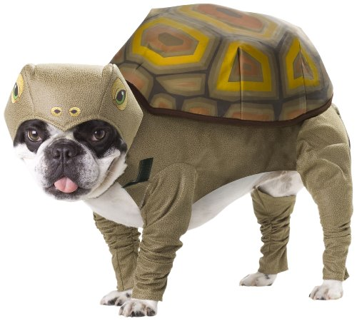 Animal Planet PET20102 Tortoise Dog Costume, X-Small