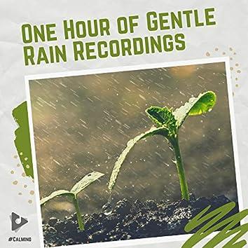 One Hour of Gentle Rain Recordings
