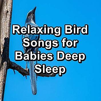 Relaxing Bird Songs for Babies Deep Sleep