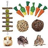 FINEVERNEK 9PCS Juguetes para Masticar Conejos, Juguete de Conejo, Pastel de Hierba Natural, Juguete de Masticar para Dientes de Molienda para Conejos, para Conejos, Chinchillas, Hámsters, Cobayas