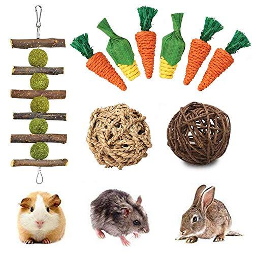 FINEVERNEK 9 Giocattolo da Masticare,Gioco per Piccoli Animali,Naturale Giocattolo per Piccoli Animali,Macinare Denti Giocattolo per Animali Domestici,Palla Naturale dell'erba per Conigli Criceti