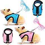 SATINIOR 2 Pieces Guinea Pig Harness and Leash Ferret Rats Hamster Soft Mesh Harness Leash Vest Set with Bell for Small Pet Rabbit Iguana Squirrel Chinchilla (Pink, Blue,S)