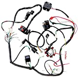 WPHMOTO Complete Electrics Wiring Harness Wire Loom Stator Coil CDI For 150cc-300cc ATV Quad Four wheelers Go Kart Dirt Pit bikes