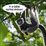 To-do 2021: Gepflegt abhängen! - Lustige Tiere als Broschürenkalender - Wandkalender - mit herausnehmbarem Poster - Format 30 x 30 cm