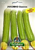 sementi orticole di qualità l'ortolano in busta termosaldata (160 varietà) (zucchino genovese)