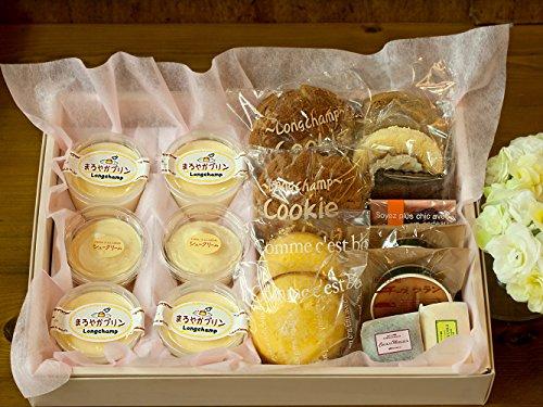 プリン シュークリーム ロールケーキ チョコ チーズケーキ 半生 ケーキ いろいろセットト (ギフト 大サイズ)