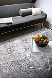 floor factory Moderner Teppich Delight Silber grau 200x290cm - edler Designer Teppich mit flauschig...