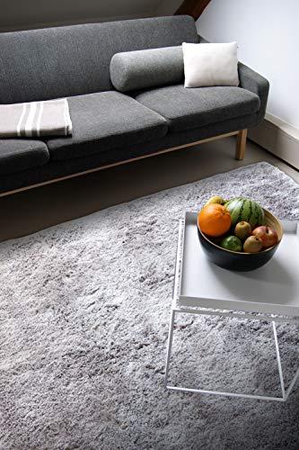 Moderner Teppich Delight Silber grau 120x170cm - edler Designer Teppich mit flauschig weichem Flor
