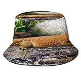 Yoliveya Sombrero de Pesca,Lagarto dragón Barbudo de Madera Enorme,Senderismo para Hombres y Mujeres al Aire Libre Sombrero de Cubo Sombrero para el Sol
