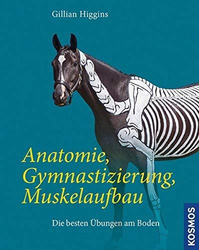 Anatomie, Gymnastizierung, Muskelaufbau by Unknown(2015-04)