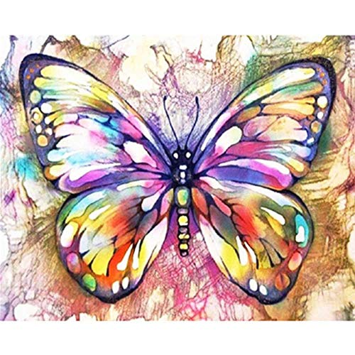 YSNMM Schilderen Door Nummers Diy Mooie Kleurrijke Butterfl Dier Canvas Bruiloft Decoratie Art Picture Gift