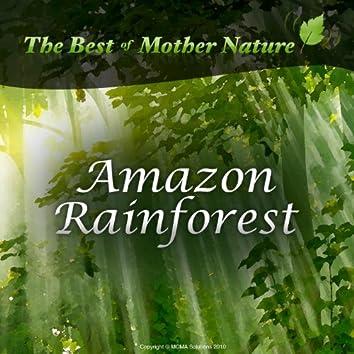 Amazon Rainforest Sounds