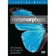 Metamorphosis: The Beauty and Design of Butterflies