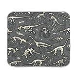HYFA Dish Drying Mats Dinosaur Fossils 16x18 Inch Kitchen Dry Mat,Absorbent Quick Drying Dish Mat Machine Washable 2101701