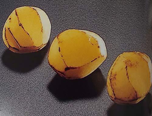 韓国産 焼き栗 ( 冷凍 ムキ 栗 ) 500g ( 約45粒 ) 業務用 冷凍