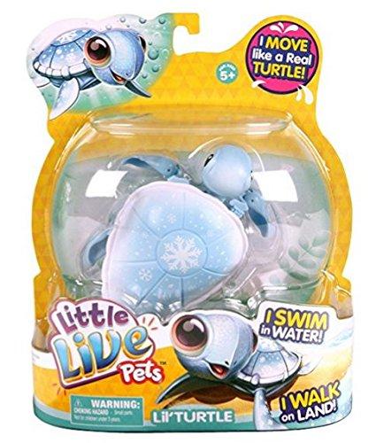 Little Live Pets- S2 Schildkröte Einzelpackung- Schneeschildkröte Eisi