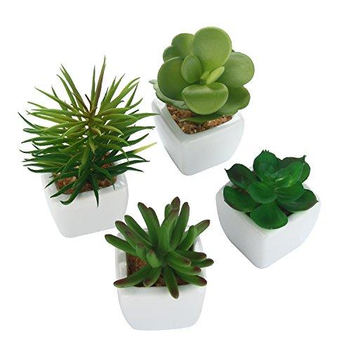 niceEshop (TM), mini art plant in pot, set of 4 Stil3