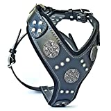 Bestia Maximus Silver big dog leather harness
