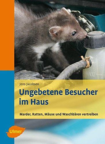 Ungebetene Besucher im Haus - Marder, Ratten, Mäuse und Waschbären vertreiben