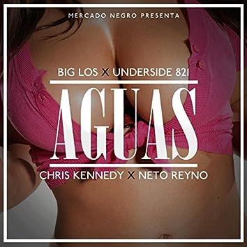 Aguas (feat. Underside821, Chris Kennedy & Neto Reyno)