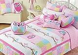 Cozy Line Pink Owl 2 Pcs Quilt Set for Kids/Girls Bedding (Owl, Twin - 2 Piece) (Owl, Twin - 2 Piece)