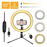 LED 10.2' Desktop Selfie Ring Light with Tripod Stand & Remote Control &10 Brightness Level & 3 Light Modes and 120 Bulbs 6500k for YouTube Video/Live Stream/Makeup/Photography for iPhone Android