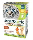 PETFORMANCE BENESSERE PER CANI E GATTI Vitality Drink-Bevanda Energizzante Prebiotica (6 B...